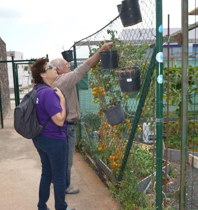 Nueva convocatoria para acceder a Huertos Urbanos ecológicos