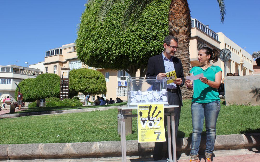 Los niños, protagonistas del Día Mundial del Medioambiente