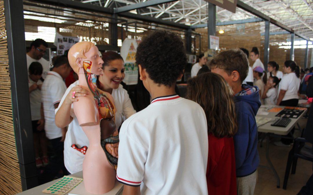 Más de mil alumnos están participando en la I Gimkana por la Salud. Puerto y Antigua