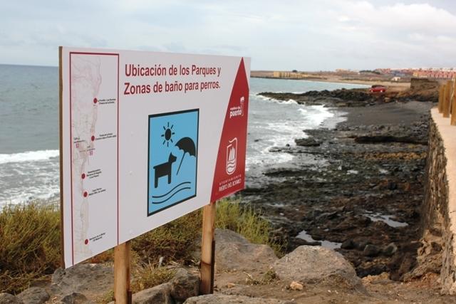 Puerto del Rosario recuerda la importancia del cuidado de las mascotas