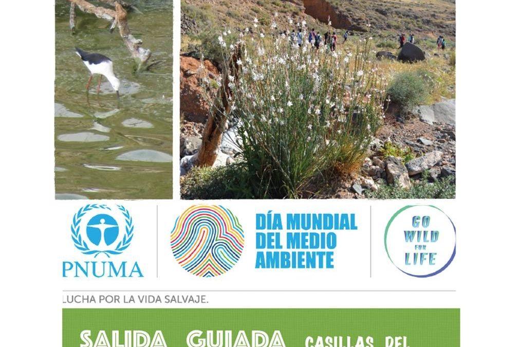Salida guiada Casillas-Rosa del Taro-Casillas en el Día del Medio ambiente