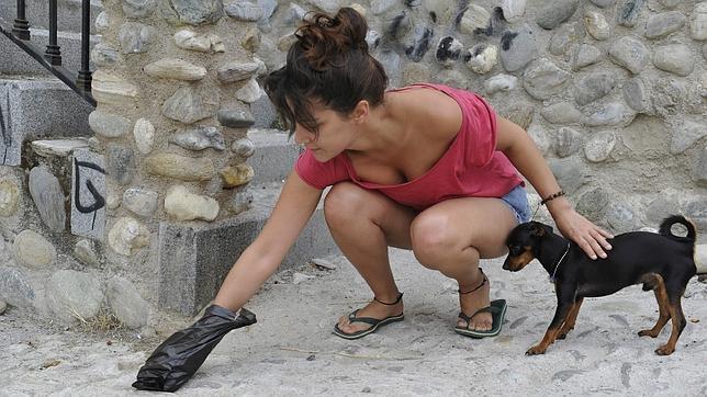 Se intensifica el  control sobre los excrementos incontrolados de los animales