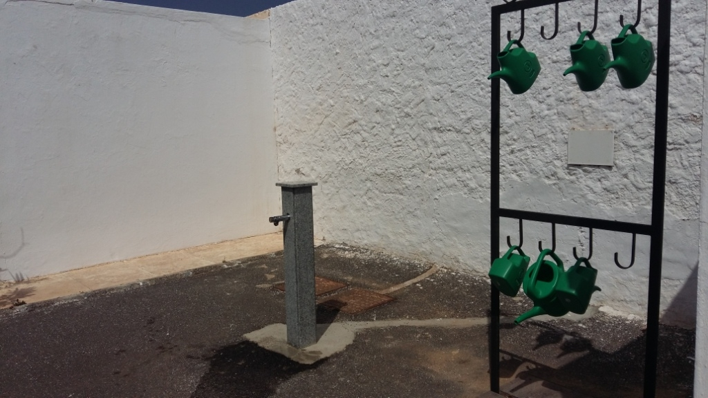 Continúan las acciones de mejora en los Cementerios municipales