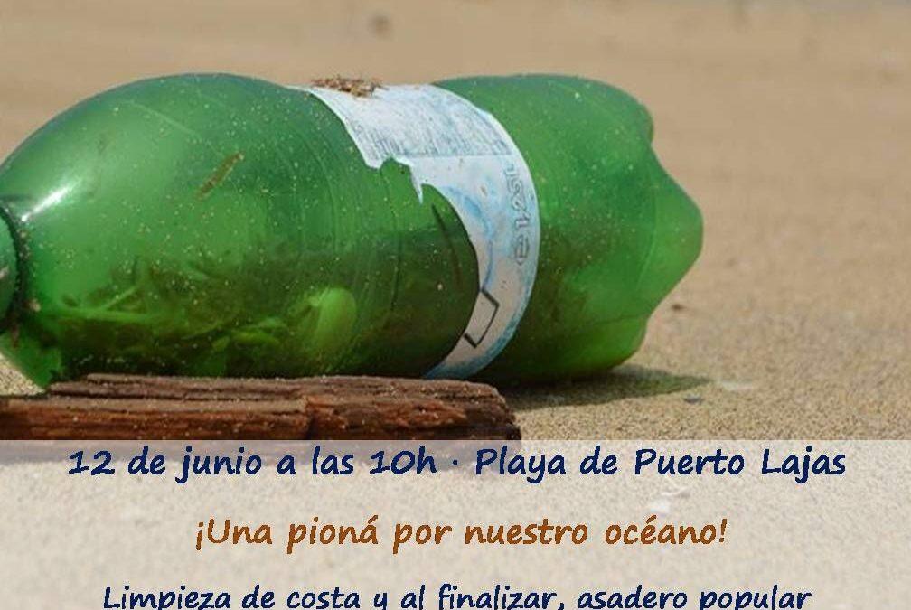 Este domingo, 12 de junio, «pioná» de limpieza en Puerto Lajas