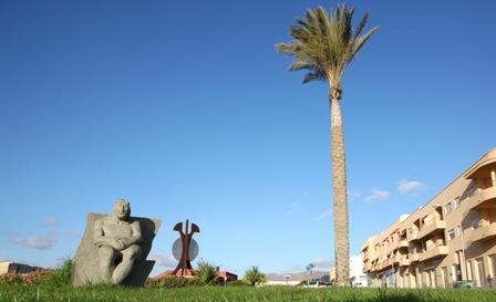 El Ayuntamiento encarga un estudio único en Canarias sobre el Plan de Mejora de las palmeras del municipio
