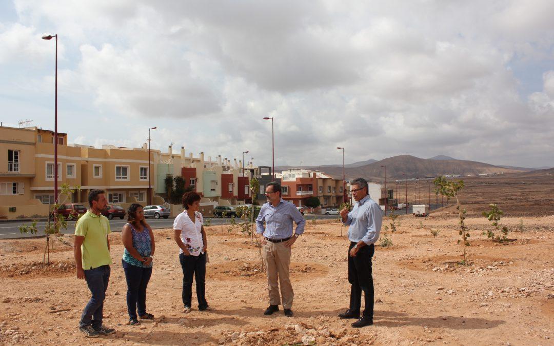 Nueva zona verde en la C/ los Sabandeños, en el barrio de Fabelo.